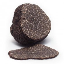 Fresh Winter Black Truffles